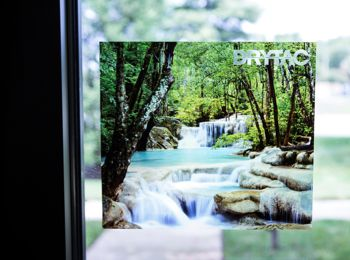 ViziPrint films for window graphics.