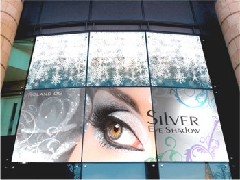 Window Graphics using white and Metallic