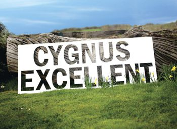Cygnus Excellent logo in landscape