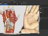 Screenshot of CorelDRAW Technical Suite 2020